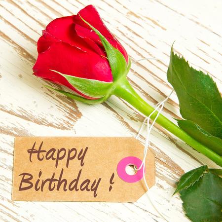 생일 축하 장미