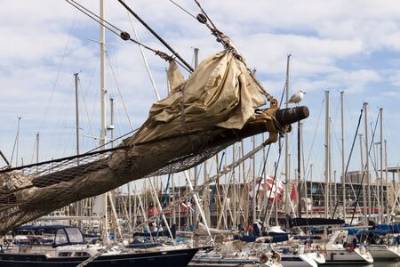 bowsprit: Bowsprit of a sailing ship with furled jibs and seagull  in the harbor with  moored yachts in background.