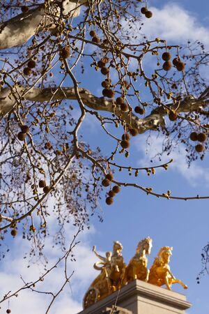 quadriga: Platanus tree and Quadriga of Aurora in Ciutadella Parc in Barcelona, Spain.