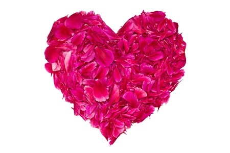 Heart of crimson peony petals on a white background