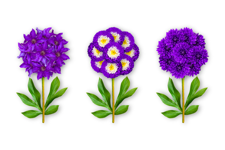 Three fantastic flower on a white background. The composition of violet clematis, asters and dahlias. Art object. The picture in the style of minimalism. 3d effect.