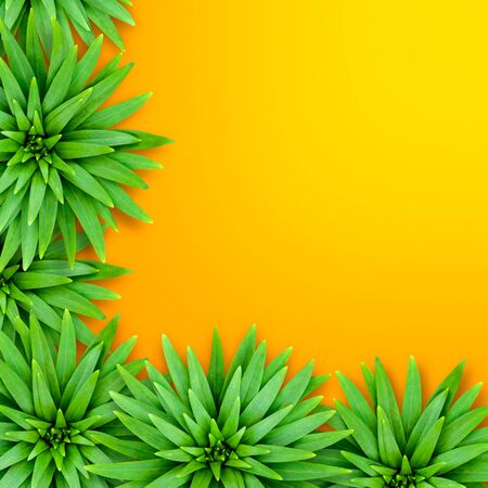 Natural background of lily leaves on an orange base. Concept of summer relaxing exotic. Leaves are located in the lower left corner of the background.