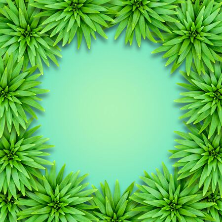 Natural background of lily leaves on an aquamarine base. Concept of summer relaxing exotic. Leaves are arranged in a circle.