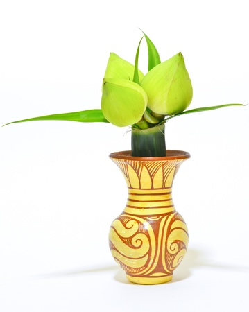 Lotus in vase isolated decoration in room  Stock Photo