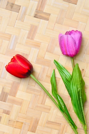 Tulips on bamboo background photo
