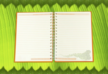 open notebook  on banana leaf background  photo