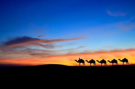 Caravane dans le Sahara désert Banque d'images