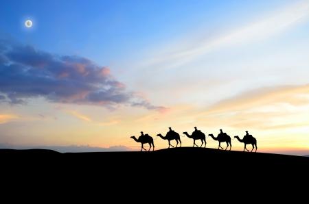 sahara: Caravan in Sahara desert