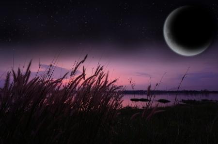 Lac Paysage avec la lune et un ciel étoilé Banque d'images