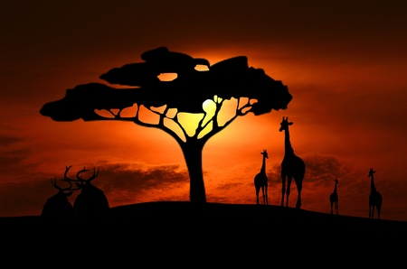 Giraffe And Deer Silhouettes photo