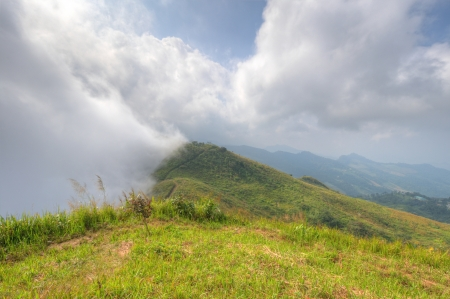Viewpoint beautiful mountain at  Doi-Pha-Tang  Chiang rai , northern Thailand  HDR  Stock Photo - 16931408