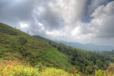 Viewpoint beautiful mountain at  Doi-Pha-Tang  Chiang rai , northern Thailand  HDR  Stock Photo - 16931326