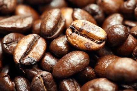 fresh coffee beans photo