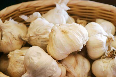 An abundance of garlic bulbs.