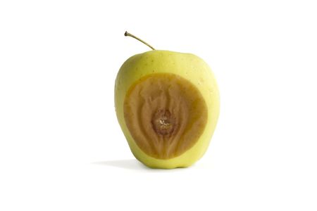 rotting: Rotting golden delicious apple Stock Photo