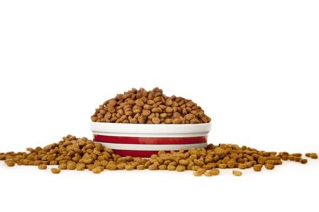 kibble: Cat Food in Bowl