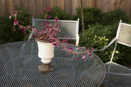 furniture: metal furniture on back porch Stock Photo