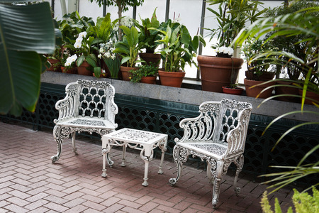 table and chairs: white chairs and table infront a ledge with plants growing