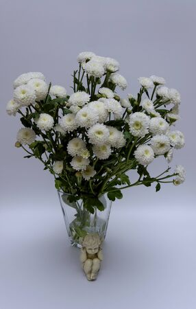 A bouquet of white flowers of Margaret's yawn proper in a nice frame