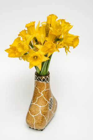 Yellow narcissus, daffodil, (Narcissus pseudonarcissus), trumpet narcissus, a bouquet of flowers in a decorative brown vase with a white pattern on a light background, ornamental plant