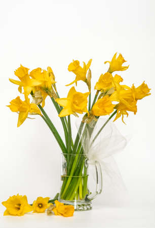 Yellow narcissus, daffodil, (Narcissus pseudonarciss), trumpet narcissus, flower bouquet in a glass vase, on a light background, flowers in the form of a bell, ornamental plant