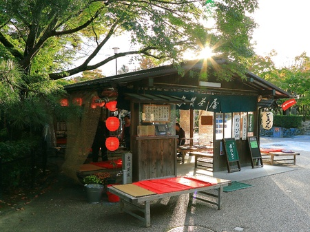 tea house: Japanese Tea House