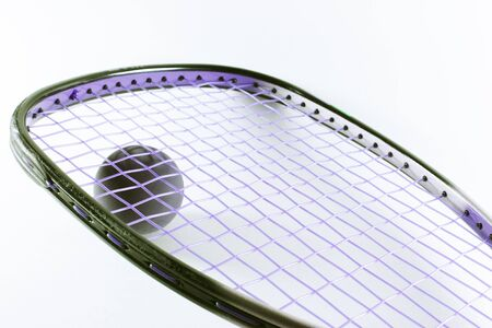 racquetball: Raqueta de Raquetbol y bola aislados en fondo claro