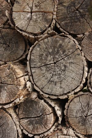 wood cut: Stackof firewood to be used as a background Stock Photo