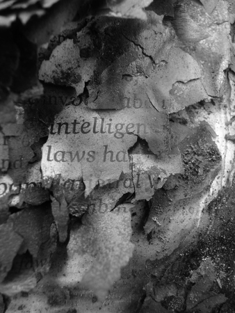 firestarter: burnt book text in profile intelligent Stock Photo