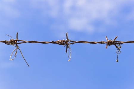 Barbed wire and blue sky photo