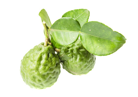 Kaffir Lime or Bergamot fruit isolated on white background