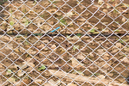 razor wire: metal chain link fence and barbed wire pattern