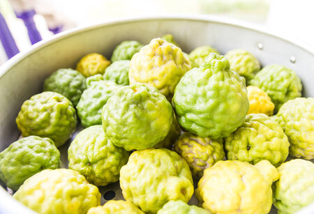 The kaffir lime, sometimes referred to in English as the makrut lime, is a fruit native to Indochinese and Malesian ecoregions in India, Nepal, Philippines, Bangladesh, Indonesia, Malaysia and Thailand, and adjacent countries.