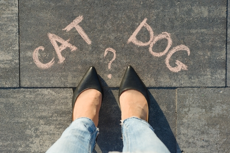 Woman before the choice cat or dog. View from above, female feet with text cat dog written on grey sidewalk
