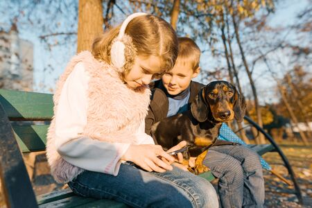 Smiling children boy and girl sitting on bench in the park with dog dachshund, children best friends laugh, look at the smartphone, the golden hour. Stockfoto