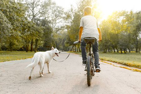 Boy child on a bike with white dog husky on the road in the park, back view.