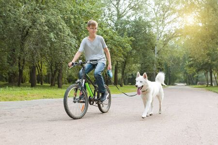 Boy with a white husky dog on bicycle in the park.