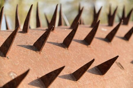 Spikes texture, spike metal rusty aged surface. 写真素材