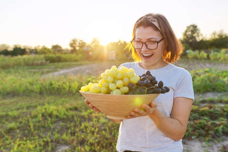 Woman with bowl of freshly picked blue and green grapes, sunny garden background. Gardening, agriculture, vineyard, harvesting, healthy natural organic food concept