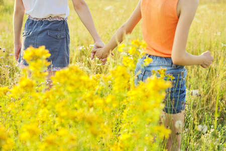 Friendship symbol, kids girls holding hands walking forward together, summer meadow with flowers and herbs background