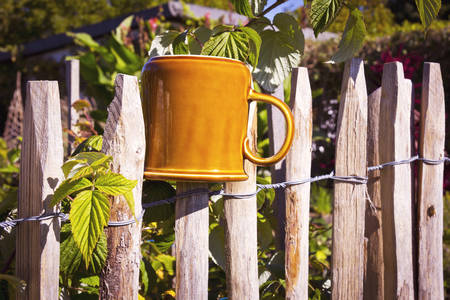 picket fence: Picket Fence with brown cup in the garden.
