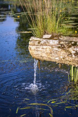 source d eau: Petite source d'eau dans la nature. Banque d'images