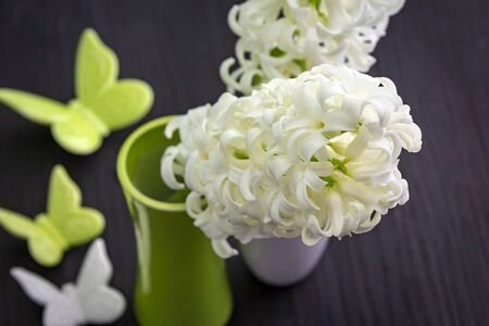 hyacinths: Close up view of white hyacinths forming a background of pretty flowers.