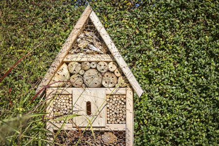 View to an insect house in the garden, protection for insects, named insect hotel, Insektenhotel.