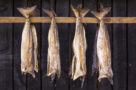 Stockfish is unsalted fish, especially cod, dried by cold air and wind on wooden racks, lakes on the Faroe Islands.