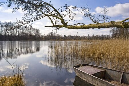 A sunny winter day at a small lake in the state of Brandenburg. It is sunny and the spring will come soon. An old rowing boat lies on the shore at a Alder Tree. Stockfoto - 134678237