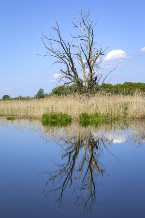 View of a peaceful river landscape. Everything is reflected in the calm water. Seen in Havelland, Brandenburg, Germany.