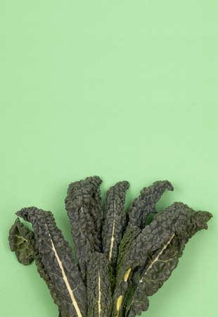 Fresh green organic raw kale, Italian kale, Tuscan kale, lacinato, dinosaur kale leaves on green background. Top view, copy space, flatlay