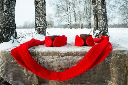 brich: Two cups of tea with knitted gloves and a scarf on winter landscape Stock Photo