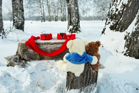 brich: Two teddy bears rest in winter forest with cup of tea